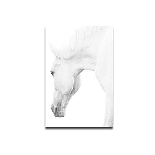 Zerama Pferdekopf Tier Art-Wand-Kunst-Ölgemälde Leinwand Keines Gerahmte Wandbild Schlafzimmer Wohnzimmer Öl-Zeichnungs-Plakat - Neue Leinwand Kunst