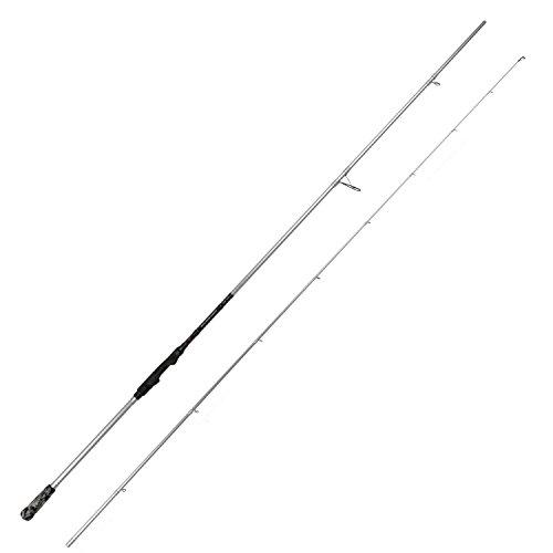 Savage Gear Salt CCS 9\'6\' 290cm 60g Spinnrute, Angelrute zum Spinnfischen, Ruten für das Angeln im Salzwasser und Süßwasser, Allroundruten zum Spinnangeln