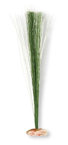 Blue Ribbon Vibran-Sea Hairgrass Aquarium-Pflanze, seidenmatt, Größe M, 9-10 cm, Grün -