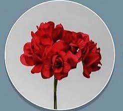 Confezione 72 pezzi-fiori, Bomboniera fiore rosellina, x segnaposto, composizione confetti. CK2113 (ROSSO)