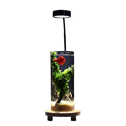 Xuejuanshop-acquari acquario serbatoio di pesce in vetro cilindrico elegante e creativo con luci a led home living room office aquarium small