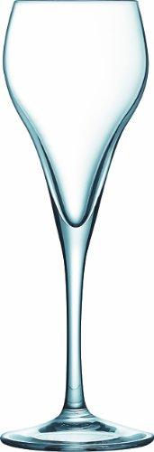 6 Champagner Sektgläser Champagnergläser Edel Gläser Glas Prosecco 16 cl Brio