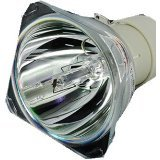 Glamps 5J.J5405.001Original Bare/Lampe für BENQ EP5920W1060W700W703D beamer