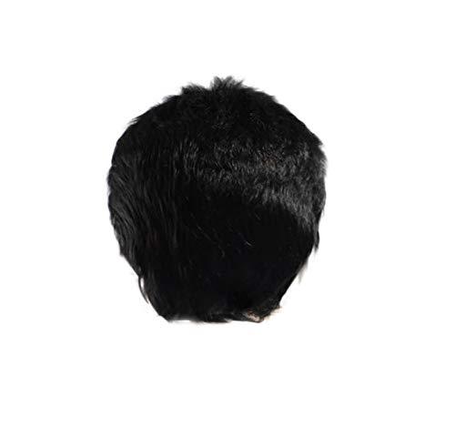 GreatFun Herren Perücken 2 Zoll Kurze Haar Perücke Schwarze Perücken Gentleman Perücke Hübsche Cool Perücke für Cosplay Karneval Party Täglichen Gebrauch (Brush Perücke Styling)
