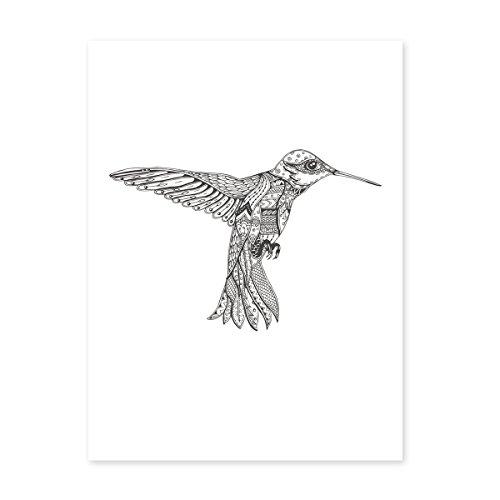 Photolini Design-Poster 'Kolibri' 30x40 cm schwarz-weiss Motiv Vogel Zeichnung