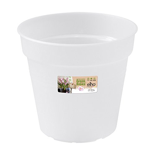 Elho 2055290 - Conceptos básicos orquídeas Verdes