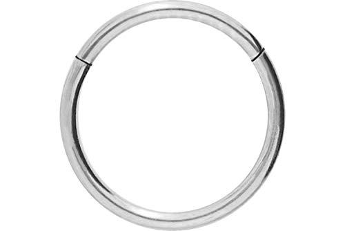 PIERCINGLINE Titan Segmentring Clicker | Piercing für ✔ Septum ✔ Tragus ✔ Helix u.v.m