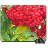 natures-bounty-mouse-pad-mousepad-fields-mouse-pad