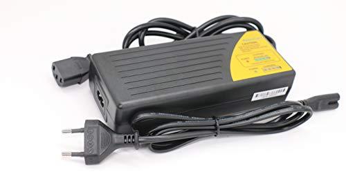 Zoom IMG-3 caricabatterie 36v bici piombo elettrica