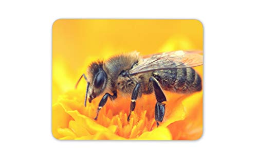 Honig-Bienen-Hummel-Mauspad Pad - Bestäubung Nektar Blume Computer-Geschenk # 16850