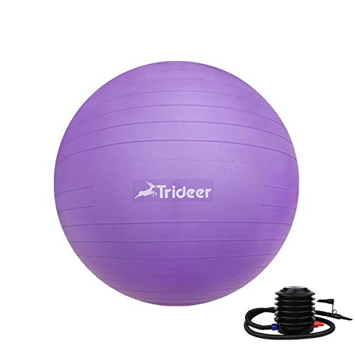 Trideer Anti-Burst & Anti-Slip Exercise Ball with Quick Pump,Yoga Ball, 55cm/65cm/75cm/ 85cm Birthing Ball, Extra Thick Heavy Duty Ball Chair (Purple, 65cm (Fits 1.62-1.79m))