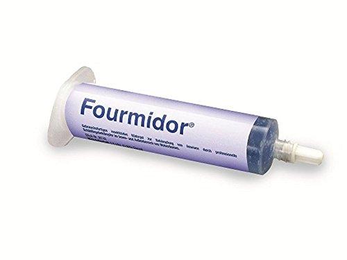 fourmidorr-ameisengel