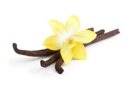 Aroma concentrato vaniglia 10ml - big flavor