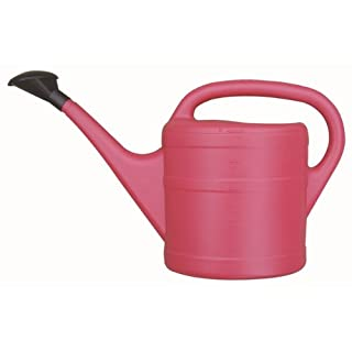 JDS Hardware Green Wash Essential Watering Can 5L Pink