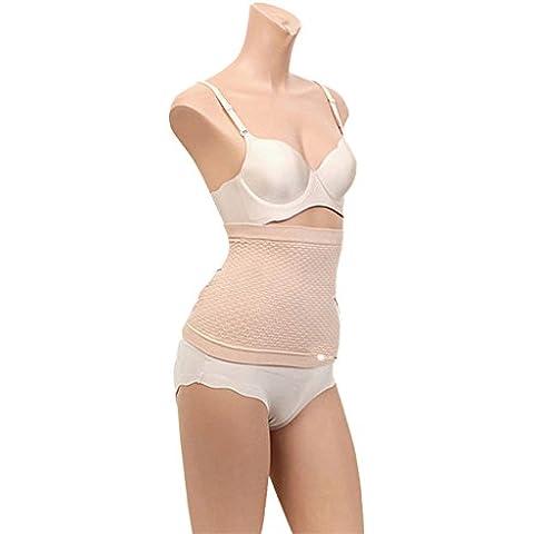 SaySure - Female body shapers slim waist bodi underwear slimming belt (Fisher Body Shield)