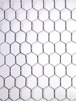 50 meters of Chicken Wire 600x25x50mt. Wire netting 2FT High