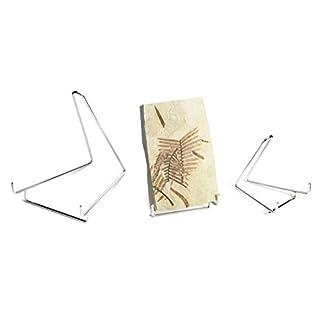 Krantz Robuste Metall Ständer, Stütze für Bücher, CD, Bluray, DVD, Teller, Mineralien, Fossilien 120 x 150 x 130 mm (BxTxH)