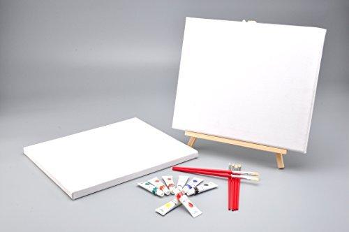 mw-pintura-17-piezas-de-aceite-de-color-ajustados-con-dos-12x10-libre-lienzos