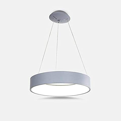 Acrylic LED Pendant Light Modern Simple Round 1 Ring Ceiling Lights D45CM Grey Shade