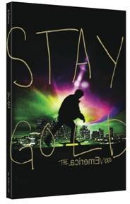 Emerica Stay gold dvd - Very Good Condition