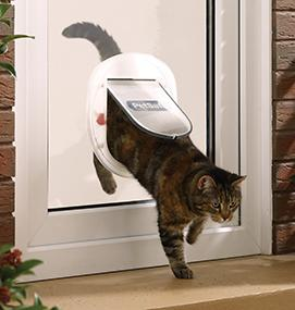 Staywell Big Cat Small Dog Door