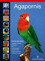 Agapornis (Pajaros/Birds)