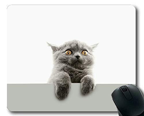 Gaming-Mauspad, lustige Katze-Mauspad für Haustiere, Mauspad für Computer cat193