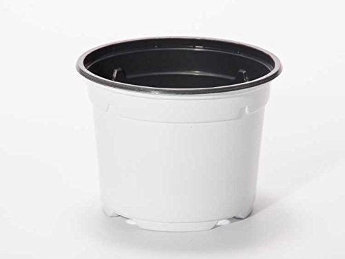 Pot horticole DUO 19 cm blanc (x 100)