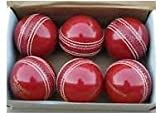 #8: WC Leather/Season Ball Four Piece 20 Overs Pack of 6