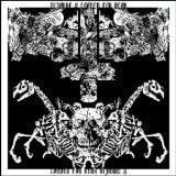 Split LP by Bizarre X/ Loaded For Bear