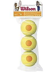 Wilson Starter Tennis Balls