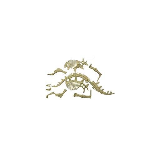 YaptheS Dinosaurier-Ausgrabung Kits, Verschiedene Dinosaurier-Fossil-Skelett Spielzeug Dig und Discover Triceratops Aushub Kit- Styracosaurus Typ