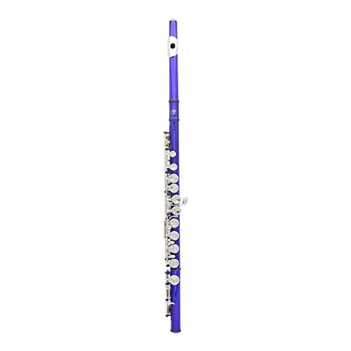 Farbe 16 Taste C Verstellbare Silberflöte, Anfänger Spielen Universal Flöte Instrumentenzubehör-Set ( Color : Blue Green )