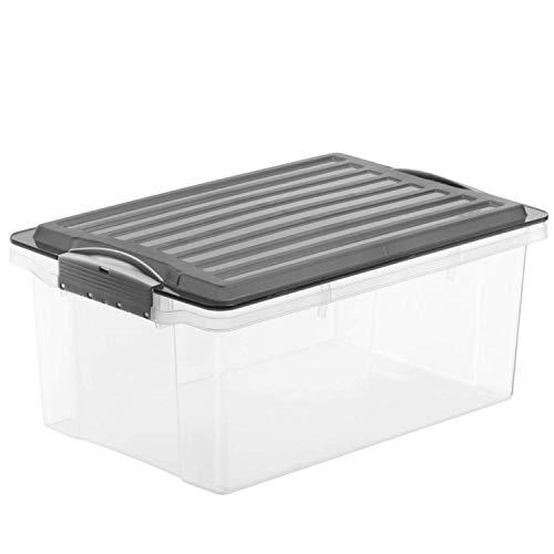 Rotho Compact Aufbewahrungskiste 13 l mit Deckel, Kunststoff (PP), grau /transparent, 13 Liter / A4 (39,5 x 27,5 x 18 cm)