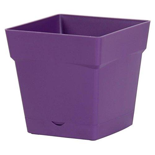 EDA Plastiques Pot TOSCANE carré avec Soucoupe clipsée 13641 VI.PR SX6 Prune 17,4 x 17,4 x 17 cm