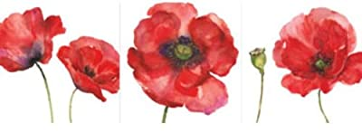Red Poppy Poppies Flower Floral Set of 3 Canvas Wall Art Pictures