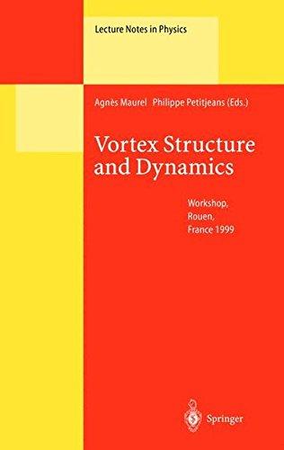Vortex Structure and Dynamics. : Workshop, Rouen, France 1999