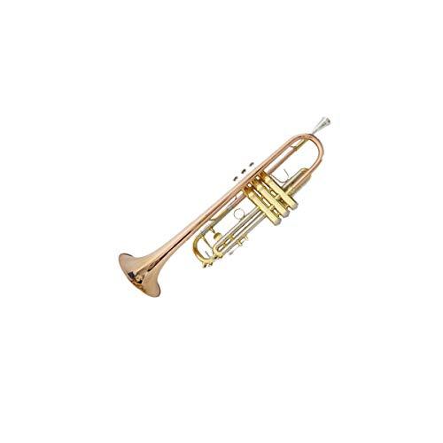 Haoyushangmao Leistungsniveau High-End-Profi-Standard-Trompete, geeignet für Anfänger, Solo- und Band-Performances, Tonart #A (BB), Messing / Phosphorbronze-Material, schöner Ton ( Color : Bronze )