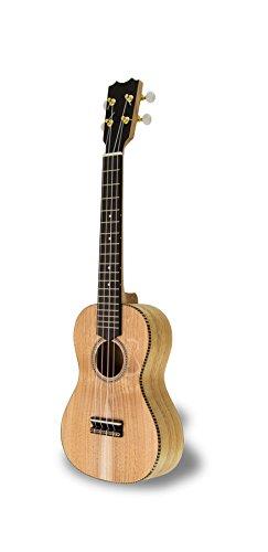 apc-ct-ukulele-concerto