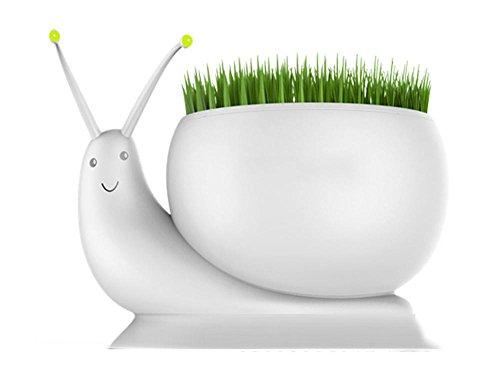 PLYY Pflanzung Pflanzen Schnecke LED Nacht Licht,tragbar Wiederaufladbare Berühren Dimmbare Lampe für Drinnen, 1 -