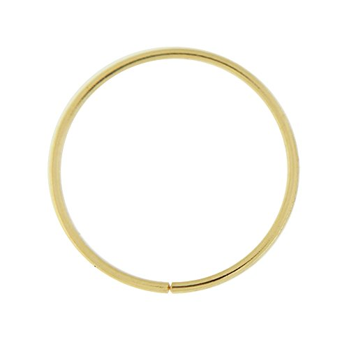 9CT or 22 indicateur solide (0,6 MM) - 3/8 po (10MM) longueur sans soudure continue nez Hoop Ring