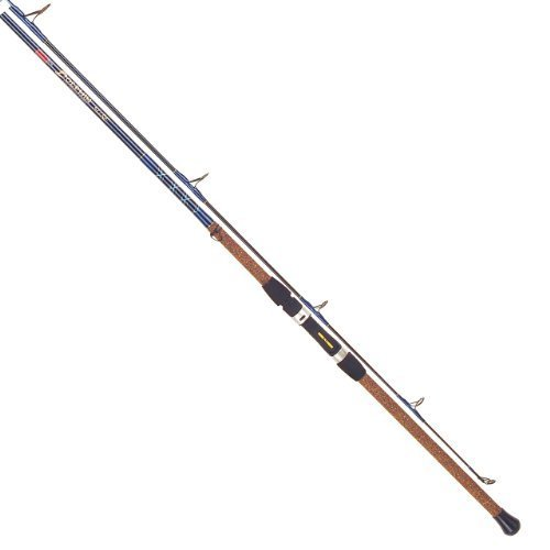 Tica ugsa106mh2s Surf Spinning Fishing Rod (Medium Heavy, 10-feet 6-inch, 2-piece, 12-30Pound) by Tica -