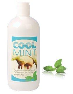 ARNDT COOL MINT CoolMint - Natürliche Euterpflege 500 ml
