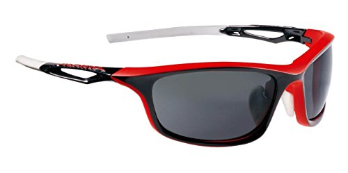 Alpina Sonnenbrille Amition SORCERY P red-Black-White, One size