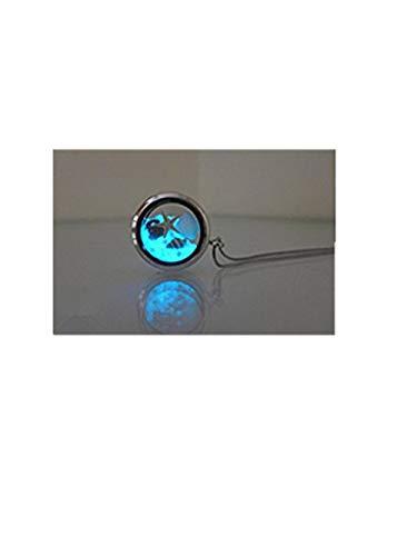 ch Schmuck, Seestern silber silber Halskette für Frauen, Seaside Schmuck, Glowing Halskette ()