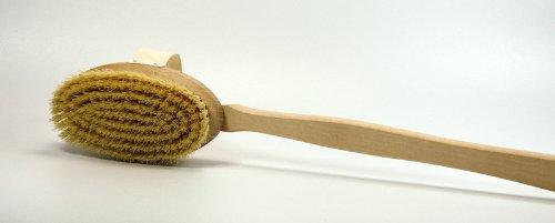 Gravidus B Brosse de bain en bois de hêtre avec manche amovible et poils mi-durs 50 cm