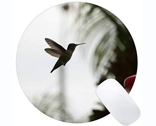 Kundengebundenes Rechteck-nicht Beleg-GummiMousepad, Kolibri, Nektar Mauspad