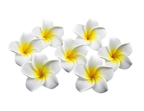 12Damen Bernstein Hawaiian Plumeria Blume Haar Clips Hochzeit Brautschmuck Dekoration Haarspange Haarspange Haar-Accessoires für Party Strand Urlaub