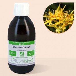 gentiane-bio-250ml-extrait-de-plantes-fraiches-bio
