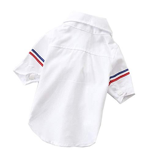 PZSSXDZW Lässige Haustierkleidung Zweibeiniges Hemd Haustierhundeanzug Hundekleidung Frühling und Sommer,Weiß,L (Girl Halloween Kostüm Geist, Spider)